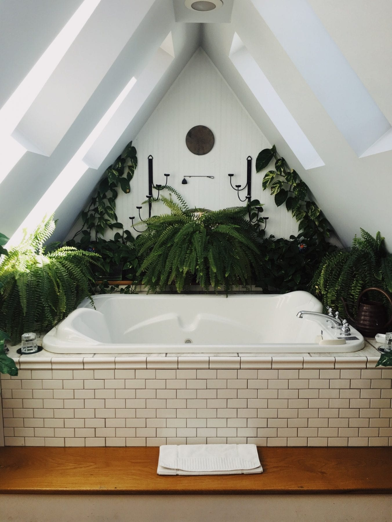 Bathroom surrounded by plants