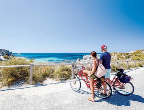Top 5 Must Do Activities For The Family In Perth