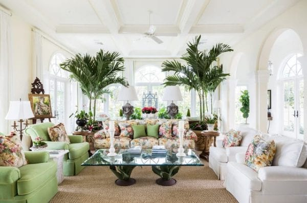 a well decorated living room with tall plants beside the couches