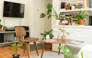 Apartment living area with plants