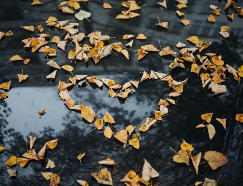 Use Self-Storage To Prepare For The Cooler Months
